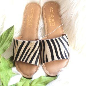 NEW COCONUTS Cabana Zebra Print Calf Hair Sandal